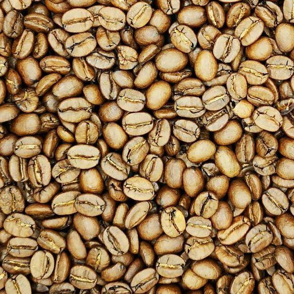 Brazilia Fazenda Lagoa kávé 100g